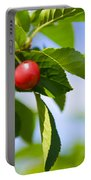 Tart Cherries Portable Battery Charger