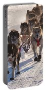 Team Of Sleigh Dogs Pulling Portable Battery Charger