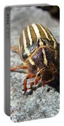 Ten Lined June Beetle Portable Battery Charger