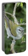 Tennessee Warbler Portable Battery Charger