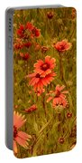 Texas Wildflowers V5 Portable Battery Charger