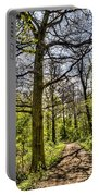 The Forest Path Portable Battery Charger by David Pyatt