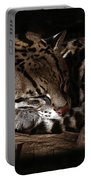 The Ocelot Portable Battery Charger