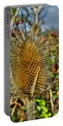 Thistle On Sunny Autumn Day Portable Battery Charger