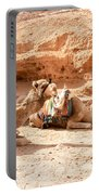 Three Camels Portable Battery Charger