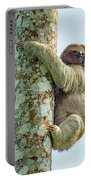 Three-toed Sloth Bradypus Tridactylus Portable Battery Charger