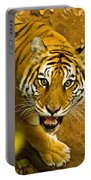 Tiger Stare II Portable Battery Charger
