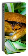 Tomato Frog Portable Battery Charger