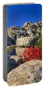 Torcal Portable Battery Charger