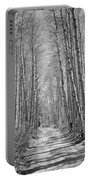 Trees Along A Road, Log Cabin Gold Portable Battery Charger