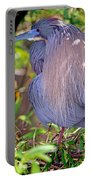 Tricolored Heron Egretta Tricolor Portable Battery Charger