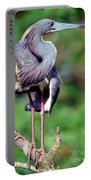 Tricolored Heron In Breeding Plumage Portable Battery Charger
