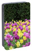 Tulip Flowers In A Garden, Chicago Portable Battery Charger