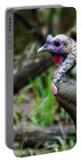 Turkey Portable Battery Charger