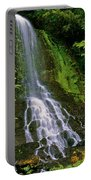 Twin Falls Creek Mount Rainier Portable Battery Charger
