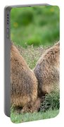 Two Marmots Portable Battery Charger