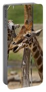 Two Reticulated Giraffes  - Giraffa Camelopardalis Portable Battery Charger