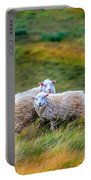 Two Sheep Portable Battery Charger
