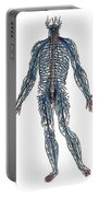 Vesalius: Nerves, 1543 Portable Battery Charger