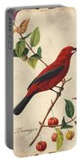 Vintage Bird Study-e Portable Battery Charger