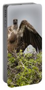 Vultures With Full Crops Portable Battery Charger