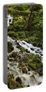 Wahkeena Creek Portable Battery Charger