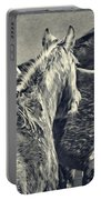 Waiting Horses Portable Battery Charger