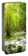 Waterfall In Rainforest Portable Battery Charger