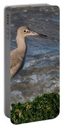 Western Willet Portable Battery Charger