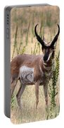 Where The Antelope Play Portable Battery Charger