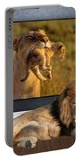 While The Lion Sleeps Tonight Portable Battery Charger