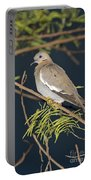 White-winged Dove Portable Battery Charger