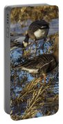 Whitefront Goose Portable Battery Charger