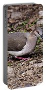 Whitetipped Dove Portable Battery Charger