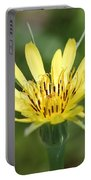 Wildflower Named Yellow Salsify Portable Battery Charger