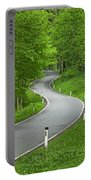 Winding Road In The Woods Portable Battery Charger