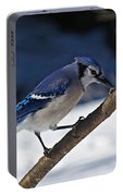 Hungry Winter Blue Jay Portable Battery Charger
