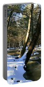 Winter Brook  Portable Battery Charger