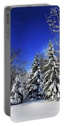 Winter Forest Under Snow Portable Battery Charger