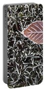 Winter With Frosted Leaf On Frozen Grass Portable Battery Charger