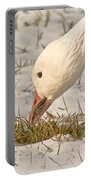 Wintering Snow Goose Portable Battery Charger