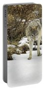 Wolf River Portable Battery Charger