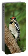 Yellow-bellied Sapsucker Portable Battery Charger