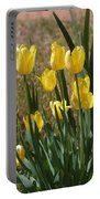 Yellow Tulips At The Arboretum Portable Battery Charger