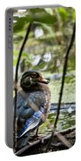 Young Wood Duck Portable Battery Charger