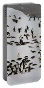 Adelie Penguins Portable Battery Charger