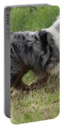 Australian Shepherd Dog Portable Battery Charger
