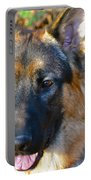 10-month-old Shepherd Portable Battery Charger