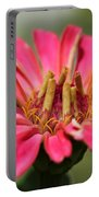 Zinnia From The Whirlygig Mix Portable Battery Charger