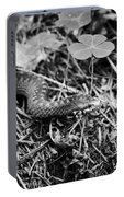 European Adder Portable Battery Charger